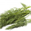 Stock Photo: Fresh Dill