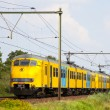 Dutch Train — Stockfoto