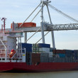 Containership — Stock Photo