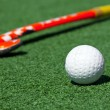 Hockey — Foto Stock