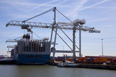 container ship in the harbour of rotterdam — Stock Photo
