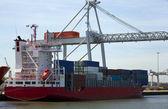 Containership — Stock Photo