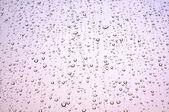 Rain dropped window — Stock Photo