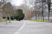 Avenue in the park — Stock Photo