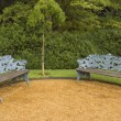 Stock Photo: Benches in the Park