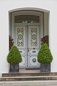 Grey Door — Stock Photo
