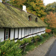Cottage with Thatched Roof — Stock Photo