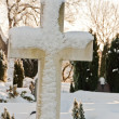 Foto de Stock  : Cross In Snow