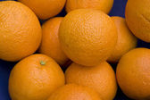 Oranges in a Blue Bowl — Stock Photo
