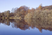 Reflections in the Lake — Stock Photo