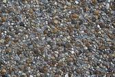 Pebbles in Concrete — Stock Photo