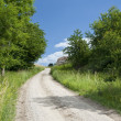 Dirt Road — Stock Photo #9012842