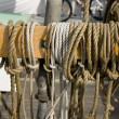Stock Photo: Half-hitch