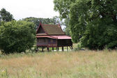 Thai House in a Danish Forest — Stock Photo