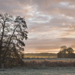 Sunrise Over the Frosty Fields - Stock Photo