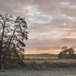 Sunrise Over the Frosty Fields — Stock Photo