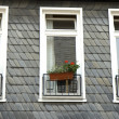 Three windows — Stock Photo