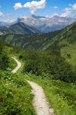 Path in mountain — Stockfoto