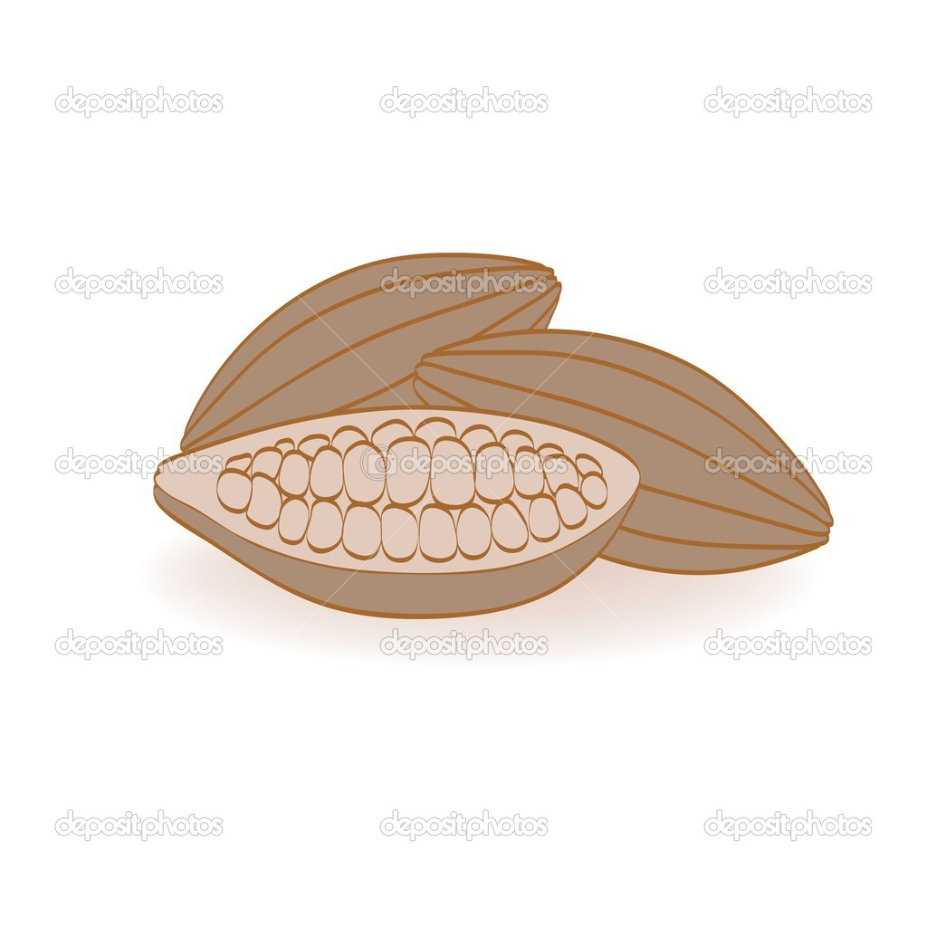 Cocoa beans on a white background — Stock Vector #8786206