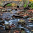 Bridge to autumn — Stock Photo #8590732