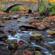 Bridge to autumn — Stock Photo