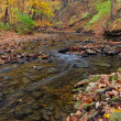 Постер, плакат: Autumn stream