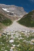 Skalistego szlak lodowcowy — Zdjęcie stockowe