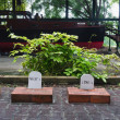 Stock Photo: Gravestones of Hemingways dogs