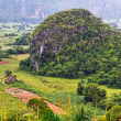 Stock Photo: Beautiful Vinales Valley in Cuba.