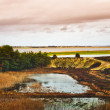 North part of the Wadden Sea in Denmark. — Stock Photo