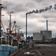 Fishing boats in a Danish harbour - Photo