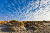 在丹麦北海海岸沙丘 — 图库照片