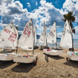 Optimist dinghies — Stock Photo