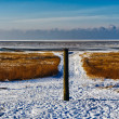 Wadden sea from the island Mando, Denmark — Stock Photo