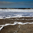 Foto Stock: Foamy beach in stormy weather