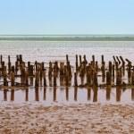 Wadden sea, Denmark — Stock Photo