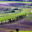 Tusclandscape from walls of Pienza — Stock Photo #8882710