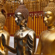 Golden buddha statues in Wat Phrathat Doi Suthep in Chiang Mai — Stock Photo #8884496