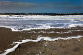 Foamy beach in stormy weather — Stock Photo