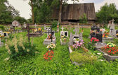 Graveyard, old and overgrown — Stock Photo