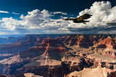 Grand Canyon National Park — Stock Photo