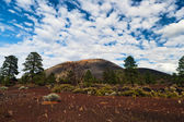 Sunset Crater National Monument, Arizona, USA — Stock Photo