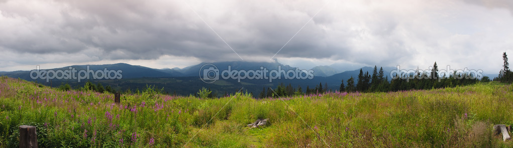 Polish Tatra mountains near Zakopane — Stock Photo #8883683