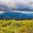 Polish Tatra mountains near Zakopane — Stock Photo