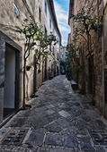 Orvieto, Umbria, Italy, narrow street with small shops — Stock Photo