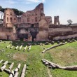 Stock Photo: Hippodrome Stadium of Domitian, Palatine Hill Rome
