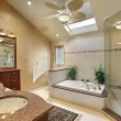 Modern master bath with skylight — Stock Photo #8677538