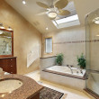 Royalty-Free Stock Photo: Modern master bath with skylight