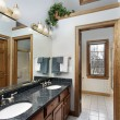 Bathroom with skylight — Stock Photo #8677643