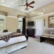 Master bedroom with tray ceiling — Stock Photo #8679196